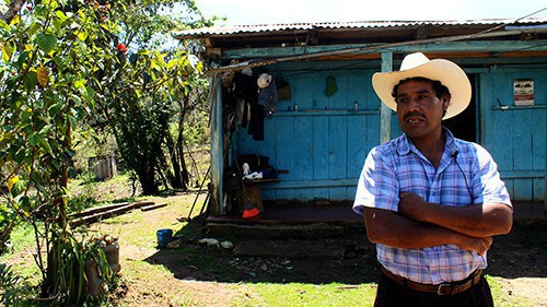 nafta an empty basket for farmers in southern chiapas  nafta fails farmers in southern