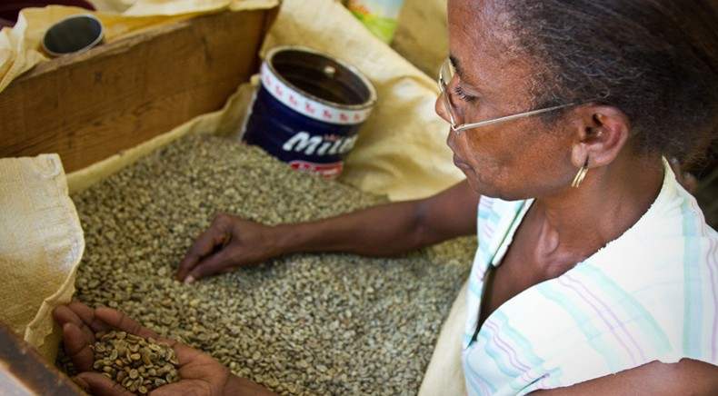 Coffee And Clothing Two Ways To Diversify An Economy